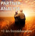 Kompabilitetsanalyse for par med 1 års fremtidsanalyse.