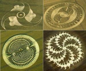 Bilder av forskjellige geometrisk perfekte kornsirkler.