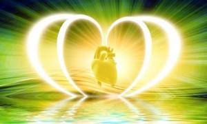Hjertet har sin egen intelligens.