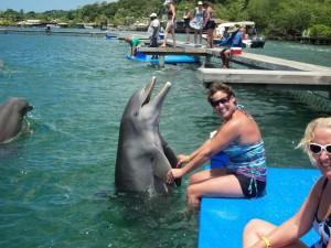 Hvorfor er så mange mennesker så opptatt av delfiner?