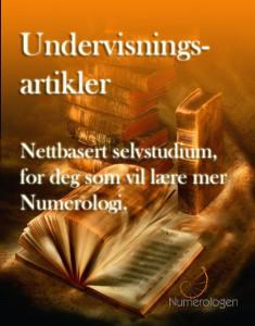 undervisningsartikler-ny201