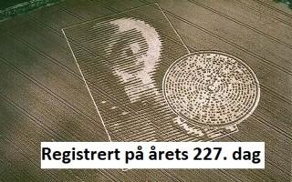 kornsirkel227s