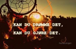 drommefanger22